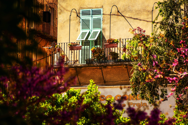 Bastia DSC_0189